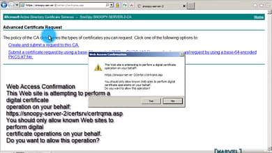 Photo of 3.5 Request-Install basic EFS certificate HTTPS Web enroll Windows Server 2008 Enterprise Sub Policy CA
